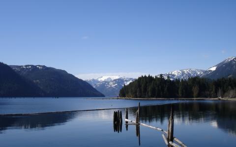高山湖泊,森林,景观,自然观