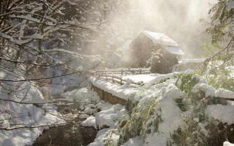 冬天,森林,河,狩猎小屋,雪,早上,美丽