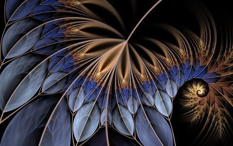 叶子,螺旋,线条,叶子