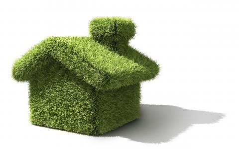房子,绿化,阴影