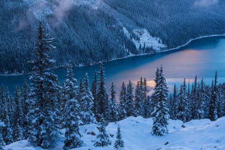 加拿大,班夫国家公园,冬天,山,湖
