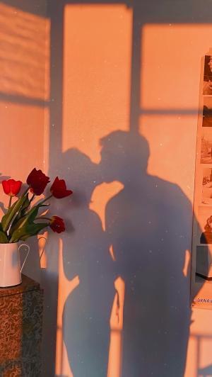 浪漫情侣接吻剪影