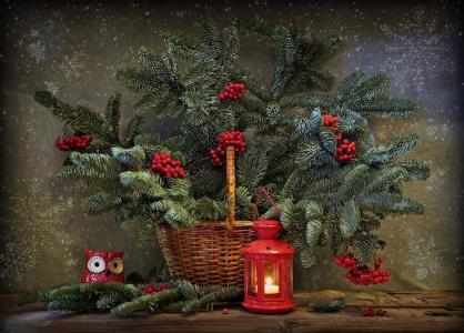 假期,新的一年,圣诞节,购物篮,分支机构,云杉,浆果,山灰,灯笼,玩具,猫头鹰,雪花