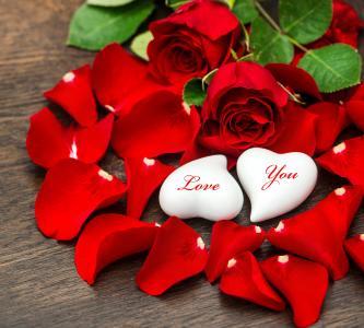 照片,玫瑰,情人节,爱,鲜花,积极