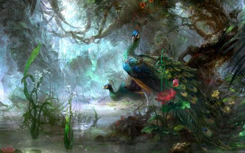 池塘,绘图,孔雀,鲜花,性质,鸟类
