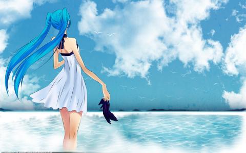 海,女孩,Vocaloid,初音未来,天空,鞋子,鸟类