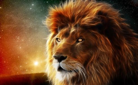 狮子,3D,photoshop,幻想,星星,林间空地