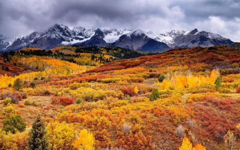 山,树,天空,秋,自然,雪,宽屏