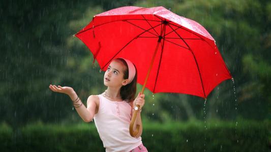 女孩,伞,红色,雨