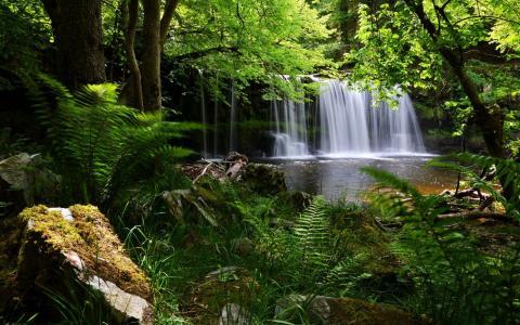 布雷肯比肯斯山,英国国家公园,瀑布,森林,蕨类植物