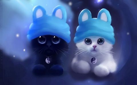 猫,阴阳,黑色和白色