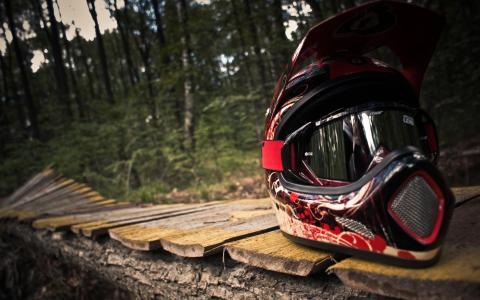 森林,路径,董事会,头盔