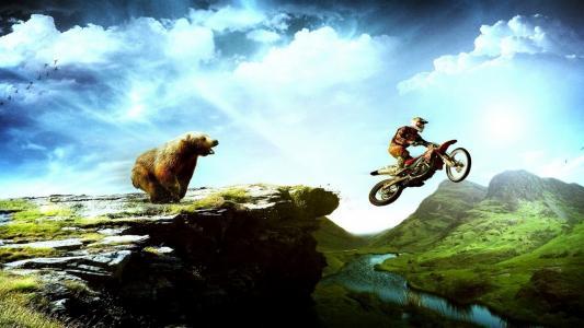熊,追逐,摩托
