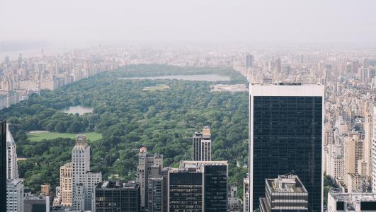 纽约,曼哈顿,中央公园,城市
