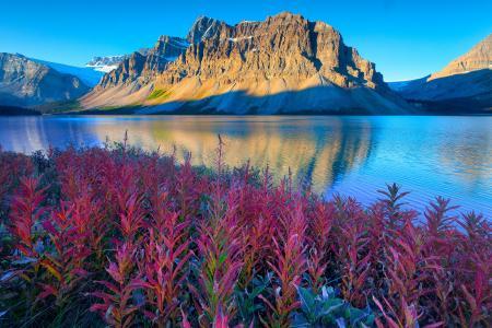 湖,班夫国家公园,加拿大艾伯塔省