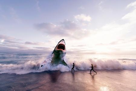 鲨鱼,冲浪,沙滩,女孩,3D图形