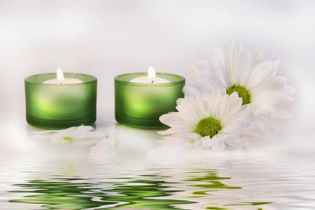 蜡烛,菊花,鲜花