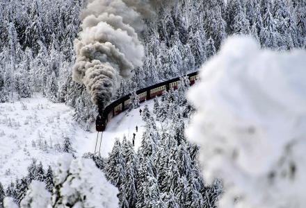 机车,山,休息,森林,冬天,火车,火车,美丽,铁路,德国