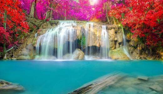 性质,秋季,树木,石头,流,水,瀑布