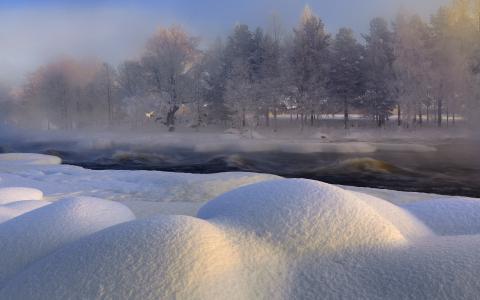树木,河流,瑞典,冬天,沃克南河,雪地,雪,瑞典