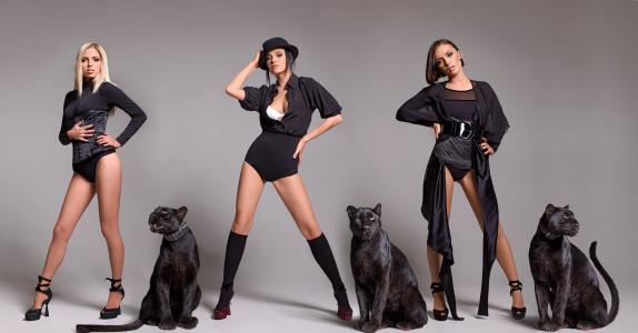女孩,组,黑豹