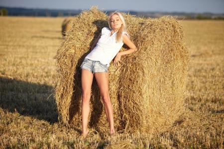 领域,干草,短裤