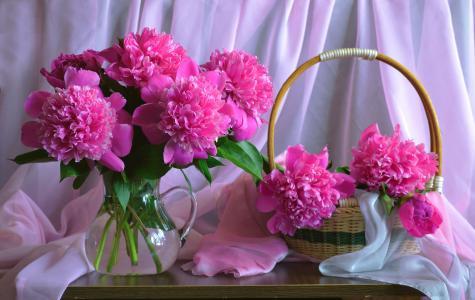 Valentina Kolova,面料,面纱,水罐,篮子,鲜花,牡丹
