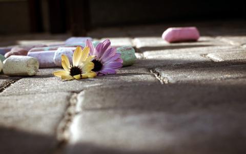粉笔,街头,鲜花,宏