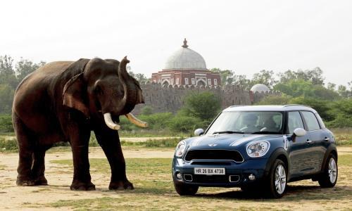 大象,车,寺,组成,3d