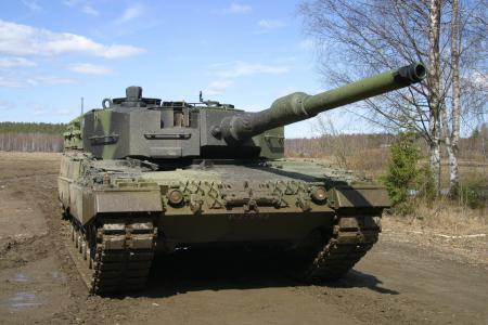 坦克,豹子,桦木