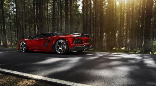 Ламборгини, суперкар, спорткар, природа, лес, дорога, Lamborghini