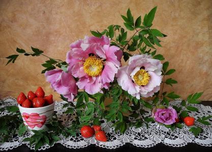 静物,鲜花,牡丹,浆果,草莓,餐巾,花边