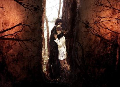 森林,爱,感觉,爱,永恒,编织