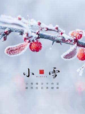 清新小雪节气风景