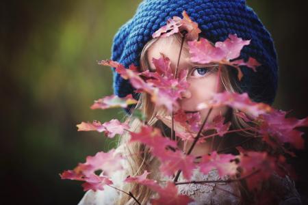 琥珀色Bauerle,孩子,女孩,贝雷帽,看,枝,叶子,枫树,秋天