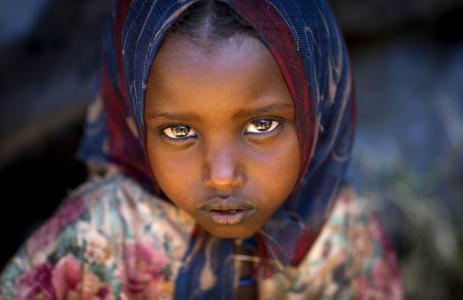 照片,儿童,非洲,埃及,宏观照片,看,积极