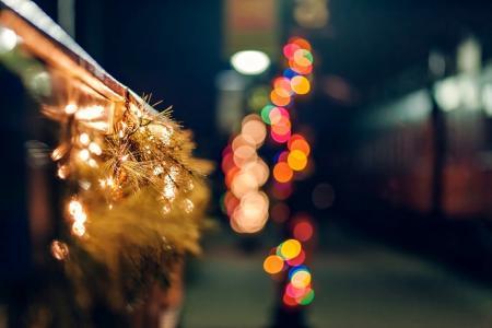 围栏,围栏,花环,分支机构,云杉,灯,灯,道路,散景,宏,冬天,假期