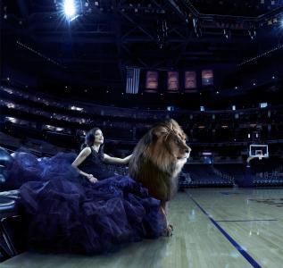 魅力,狮子,竞技场,女孩,猫