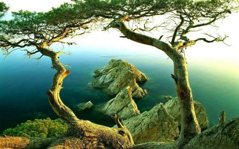岩石,湖泊,美丽,石头,性质
