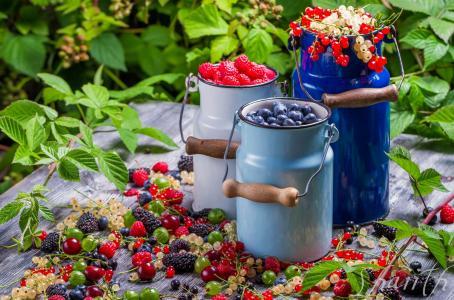 食物,水果,浆果,黑醋栗,醋栗,蓝莓,覆盆子,黑莓,罐头,维生素