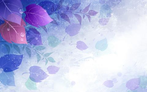 叶子,蓝色,白色,绿色,丁香