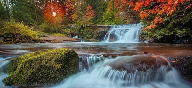 森林,瀑布,河流,阳光,美女,流动,美女