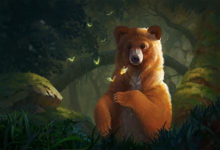 性质,熊,蝴蝶,图纸