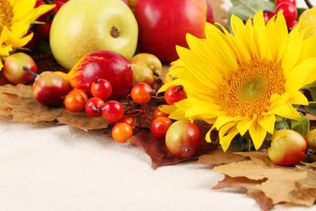 水果,向日葵,美味