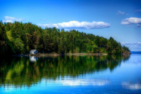 美国,Lilliwaup,河,岸,森林,房子,树,天空,云,反射