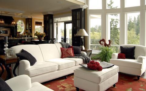 白色,室内,设计,窗户,客厅,家具。