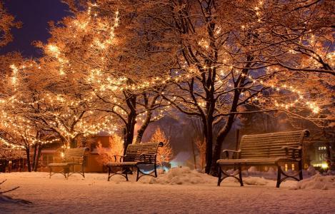 冬天,公园,长凳