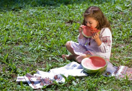 女孩,性质,乌克兰,孩子,浆果,西瓜,美味
