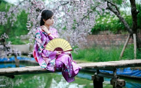 亚洲,春天,风格,风扇