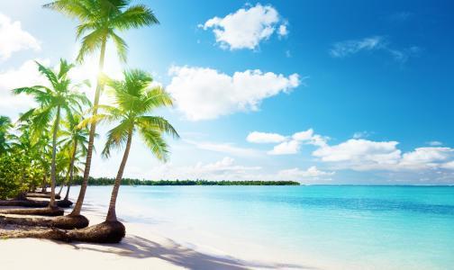 棕榈树,云彩,大海,沙滩,沙子